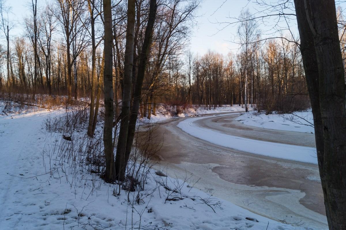 В Невском лесопарке. Река Черная. Красивая излучина.