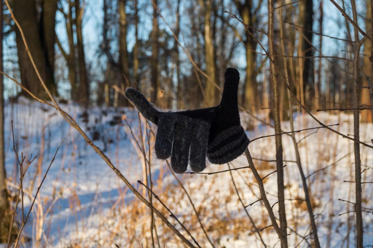В Невском лесопарке. Веселая перчатка.