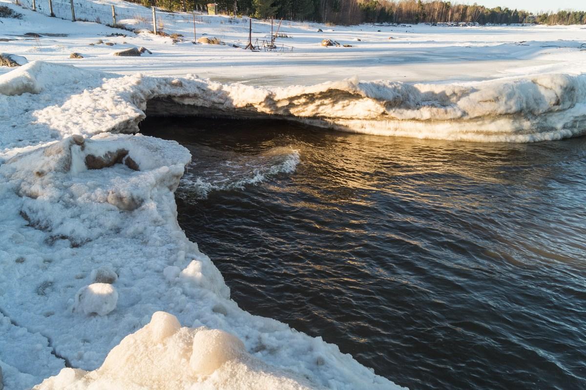 На берегу Ладоги. Вода и лед. Кто кого?