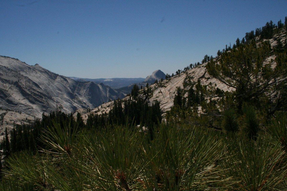 Калифорния. На смотровой площадке у отрогов Сьерра-Невада. Горный пейзаж с иголками.