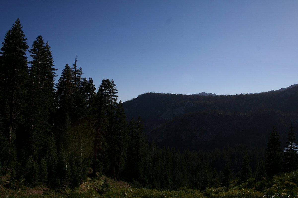 По дороге к Мамонтовым озерам. Горы и леса. Калифорния.
