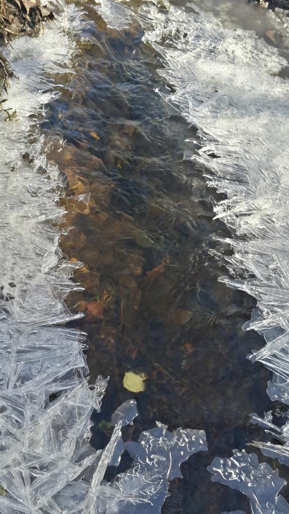 Ручеек во льду