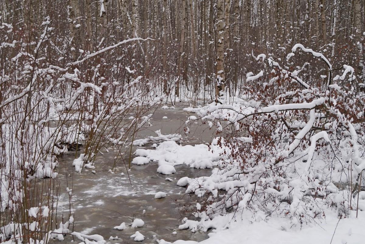 Апрель в Удельном парке. Зимняя сказка.