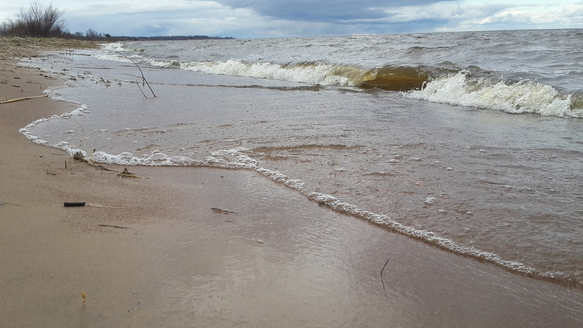 На берегу Чудского озера у Гдова. Конец апреля.