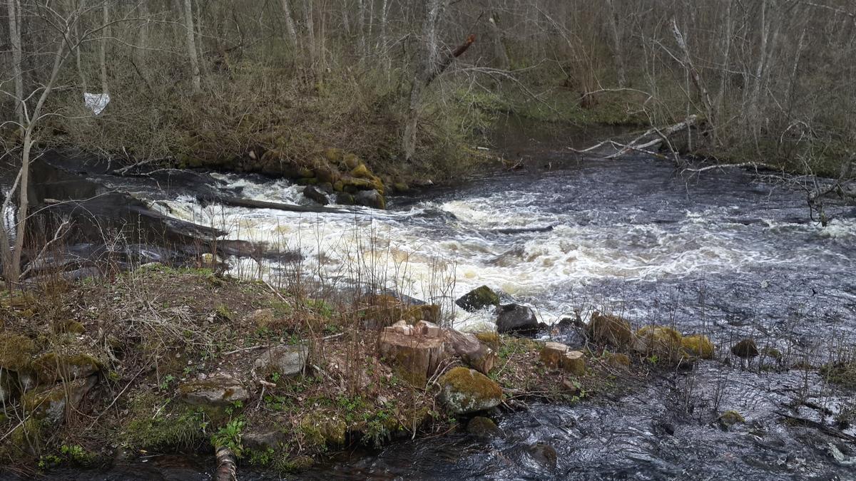 У Доложской пещеры. Река Долгая бурлит.