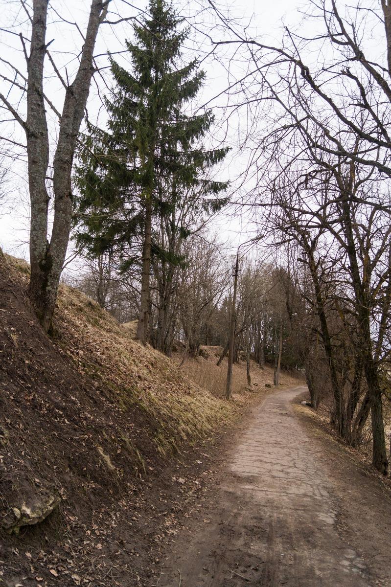У земляных валов Гдовской крепости.