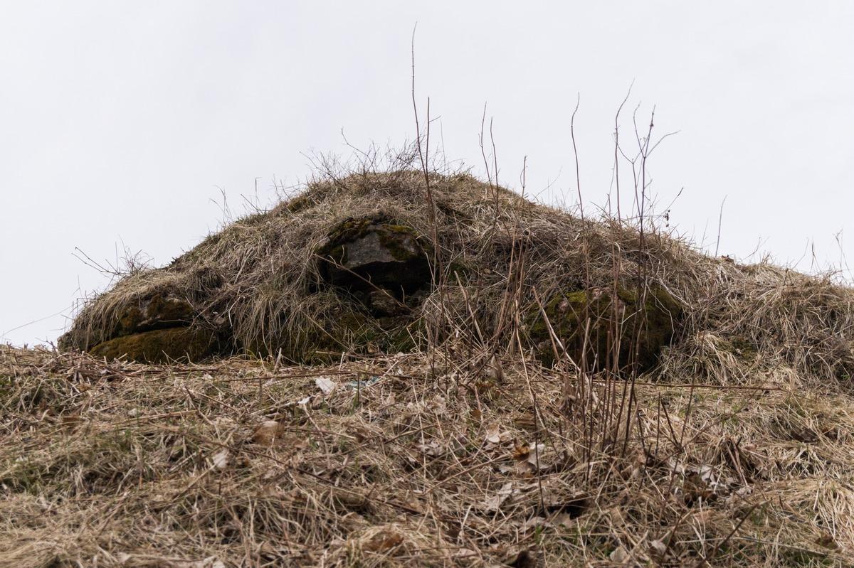 Гдов. Земляные валы и остатки каменных стен Гдовской крепости. В виде головы верблюда.