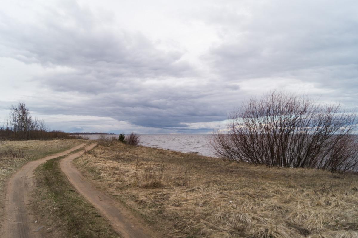У Гдова. На берегу Чудского озера. Конец апреля.
