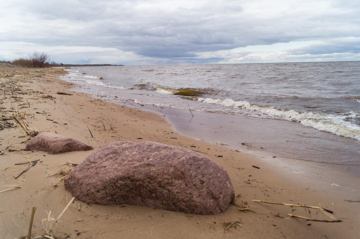 Суровый апрель на берегах Чудского озера.