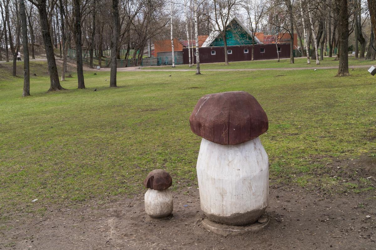 Псков. В парке культуры и отдыха. О, грибочки!