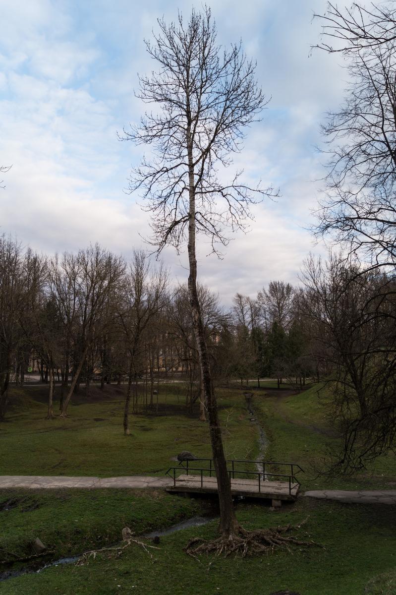 Псков. В парке культуры и отдыха. Ручей, холмы и прочие чудеса природы.