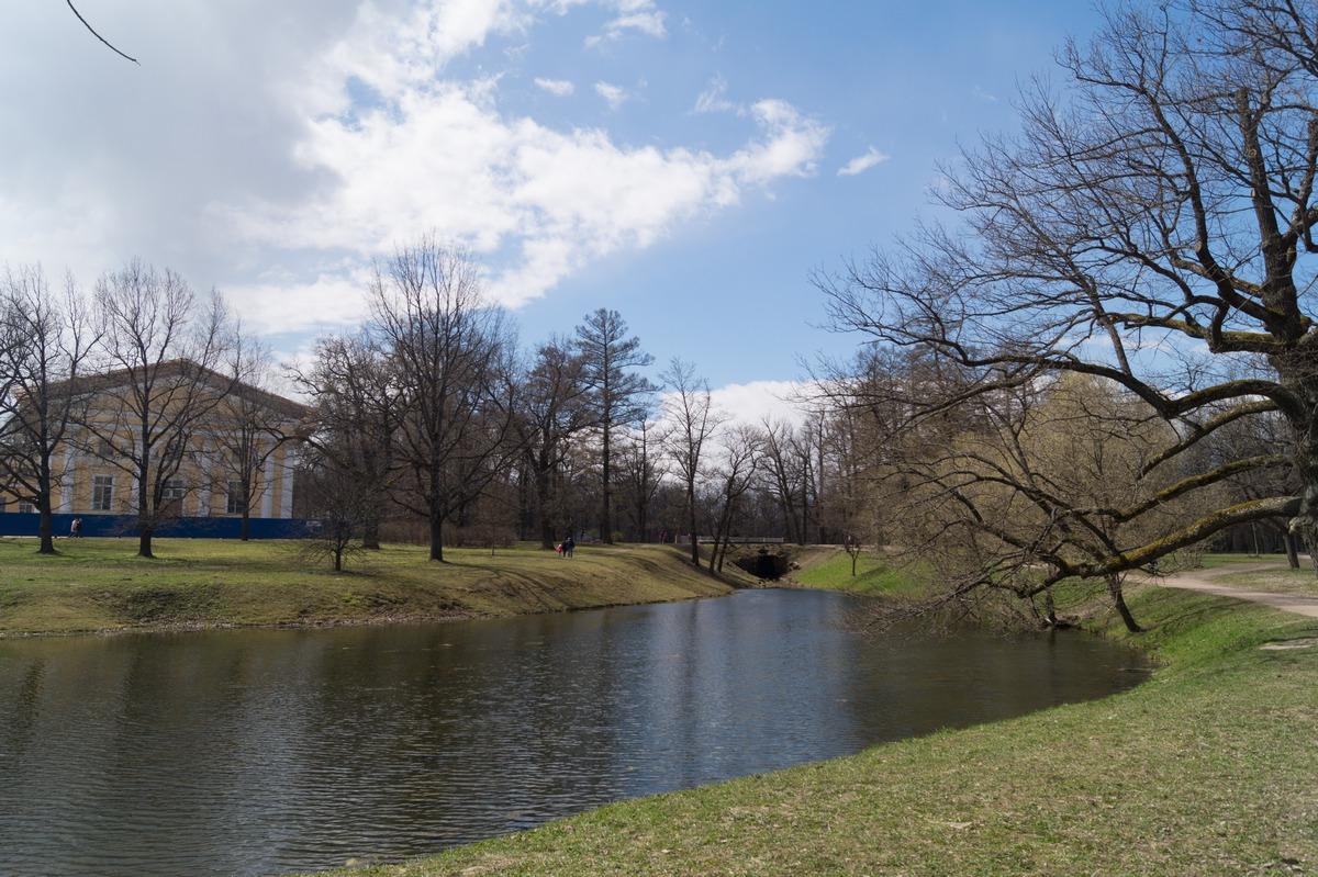 Пушкин. Александровский парк. Детский пруд в середине мая.