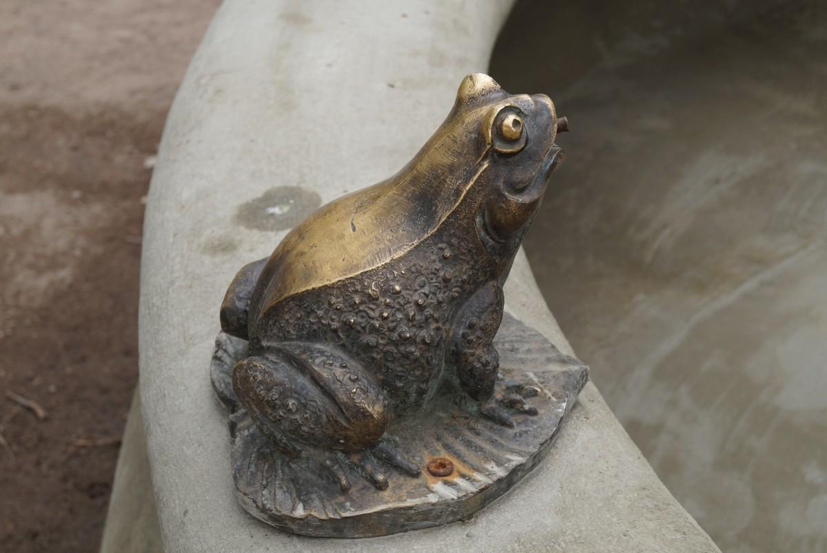 Фонтан в Никольском саду. Лягушка.