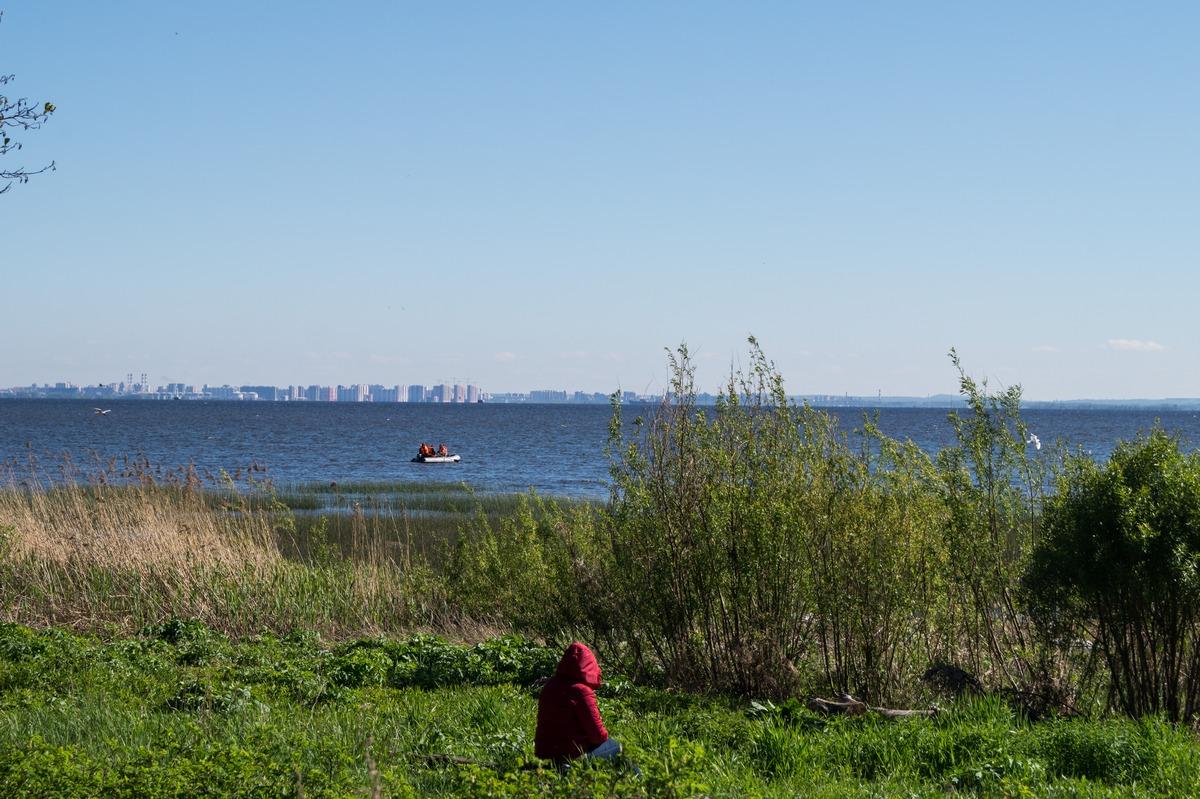 Ольгино. На берегу Финского залива. Июньская воскресная зарисовка.