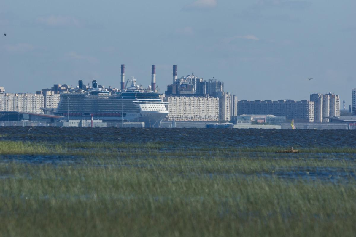 Ольгино. На берегу Финского залива. Круизный лайнер у Васильевского.