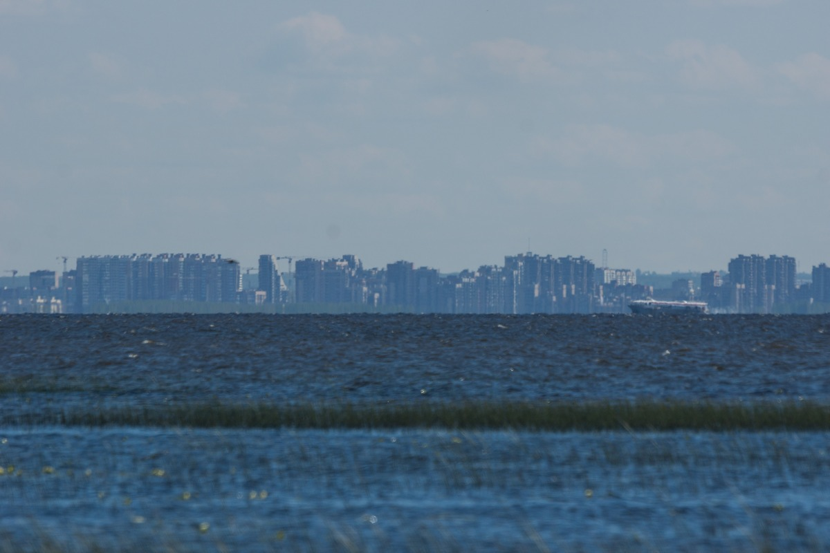 Ольгино. На берегу Финского залива. Вид на Санкт-Петербург.