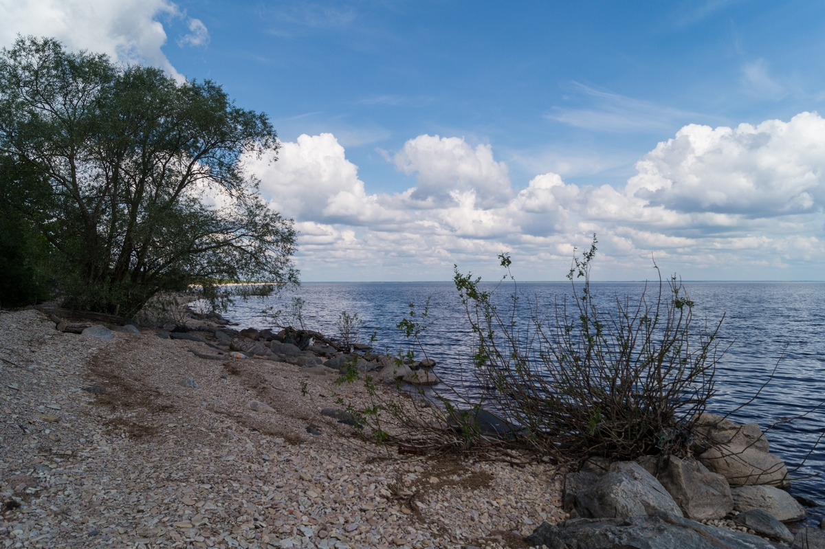 Коростынь. На берегу Ильменя.