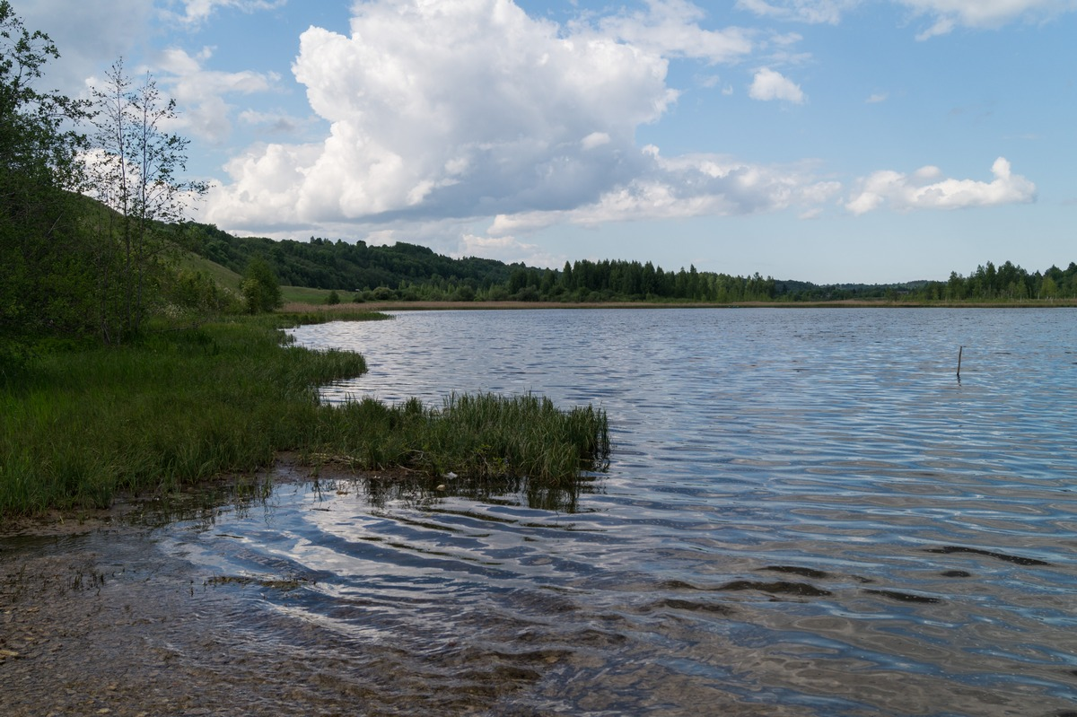 Изборск. На берегу Городищенского озера.