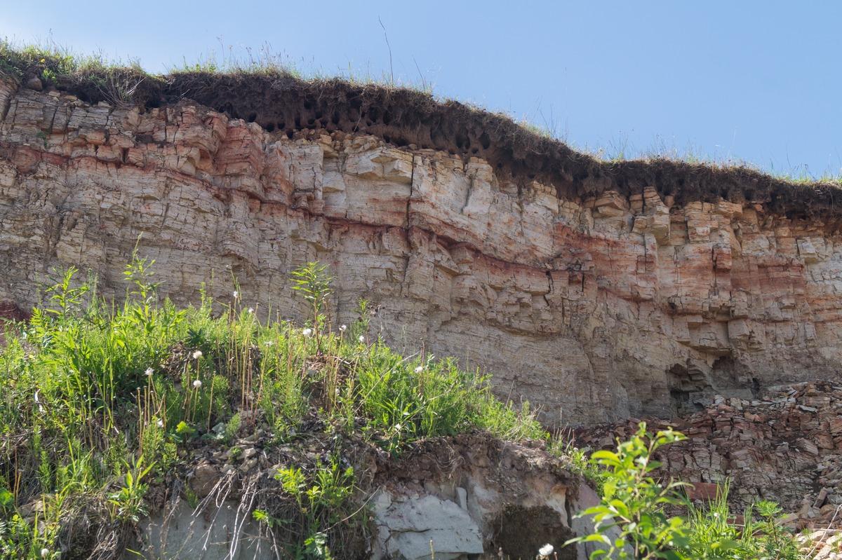 Ильменский глинт в Ретлё. И дома ласточек-береговушек в грунте.
