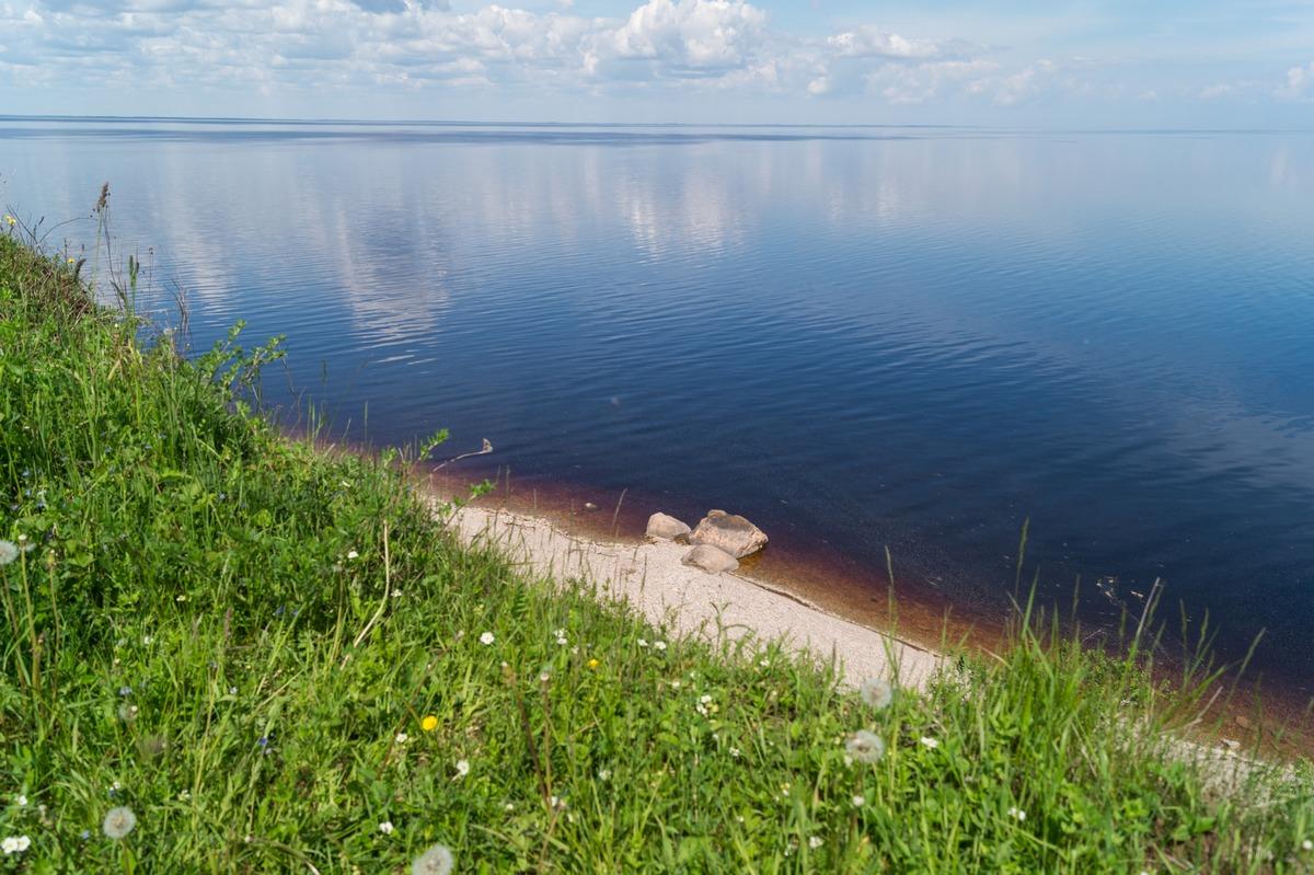 Синее озеро Ильмень. Вид с высокого обрыва. Июнь.