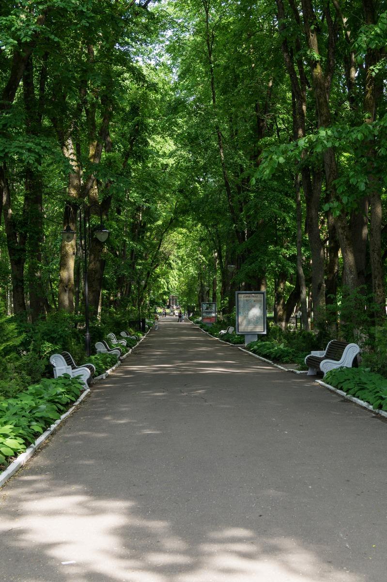 На главной аллее курорта Старая Русса. Июнь.