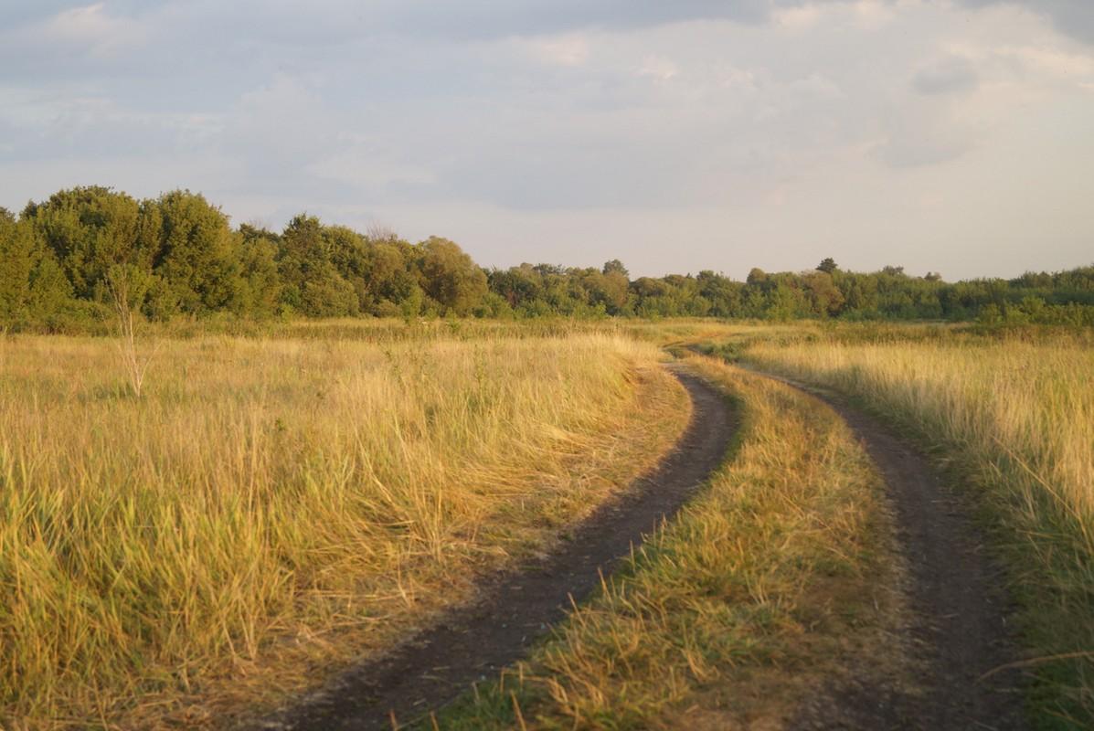 Старый Оскол. Дорога в поле. По пути от Карьера.