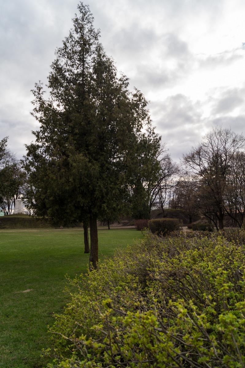 Псков. В парке культуры и отдыха.