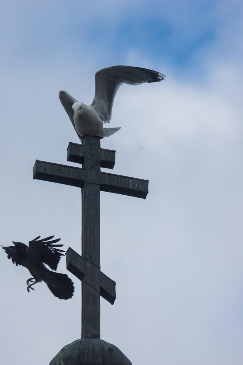 Псков. Церковь Георгия на Взвозе. Ангел и демон.