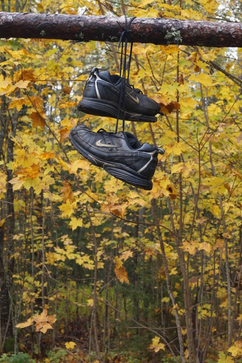 У Большого Красноперского озера. Ботинки ждут своих хозяев на пикник.