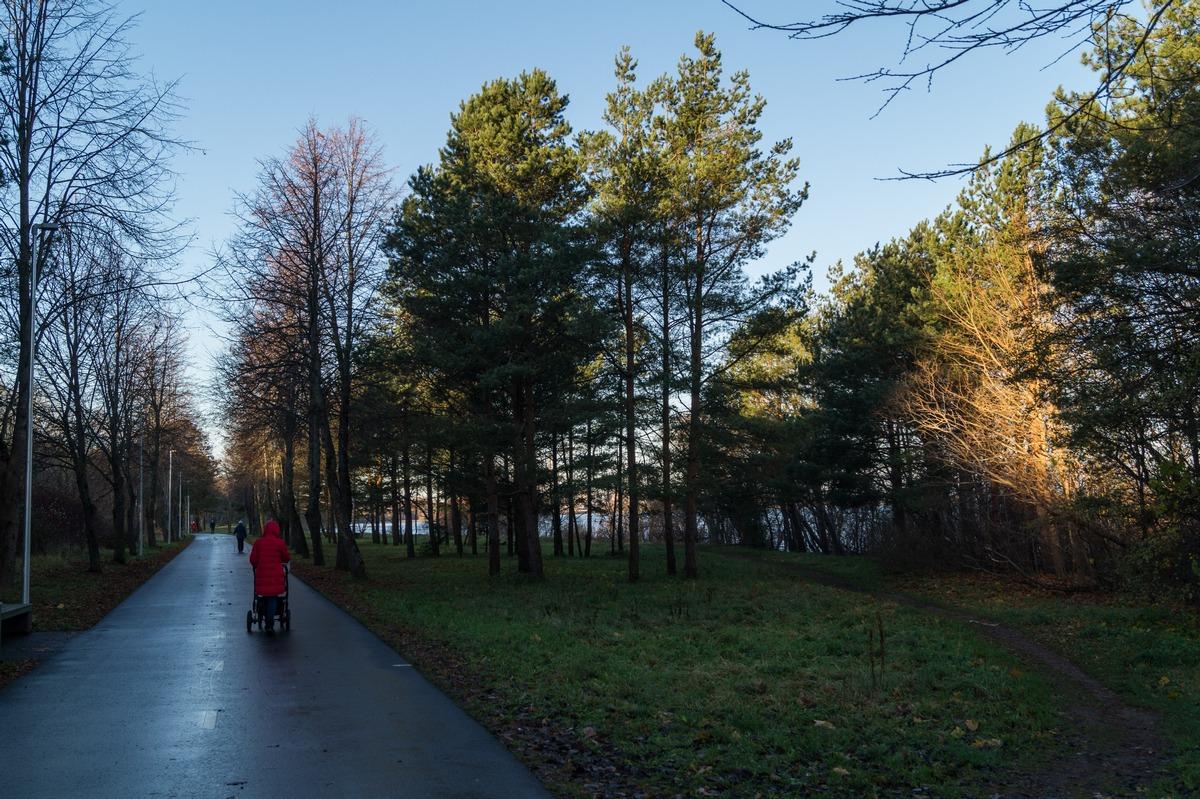Эстония. Силламяэ. Заповедник Удрия. Хороший уютный парк.