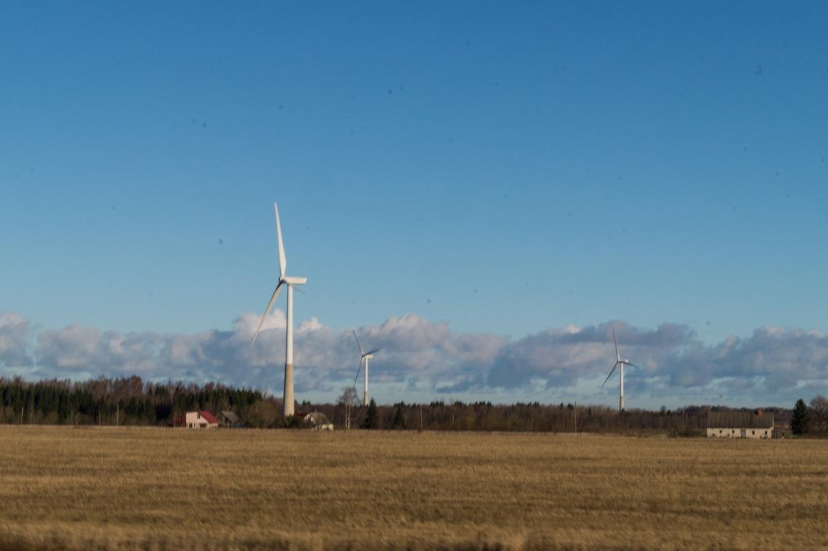 Эстония. Ветропарк.