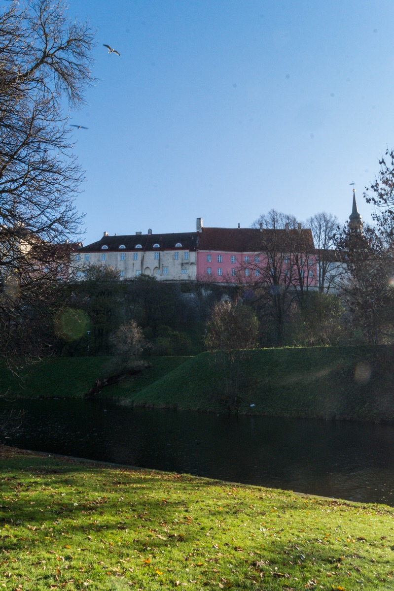 Таллин. В парке Шнелли у пруда. Вид на Верхний Город.