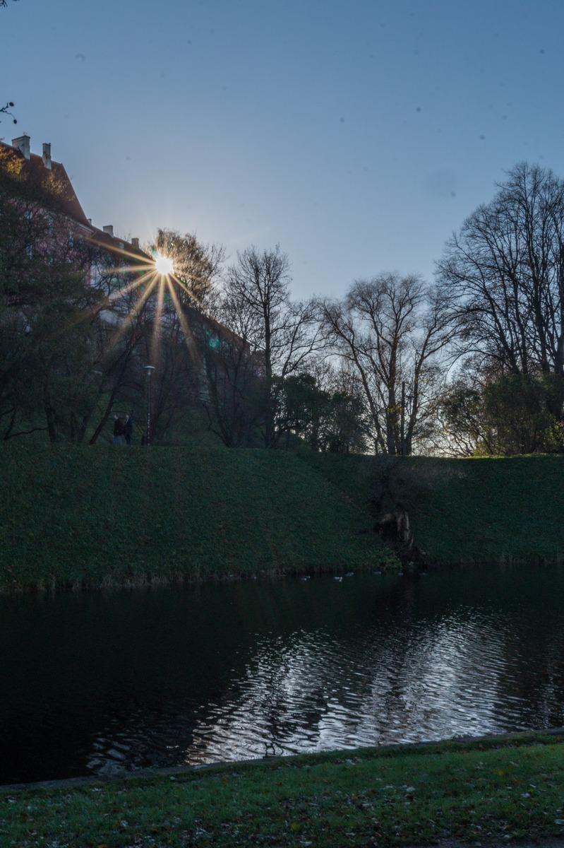 Таллин. В парке Шнелли у пруда.