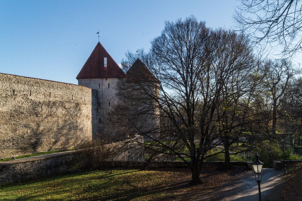 Таллин. Вид на Девичью башню и Кик-ин-де-Кек. При ноябрьском солнце.