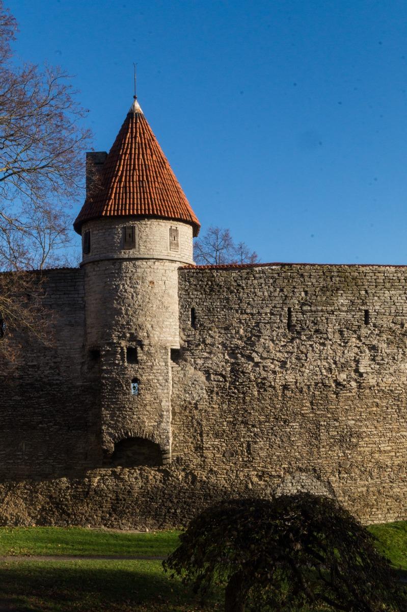 Таллин. Башня Талли и часть старой крепостной стены.