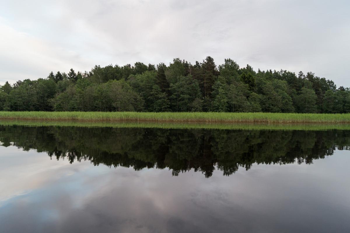На Финском заливе. Лето. Утро и отражение.