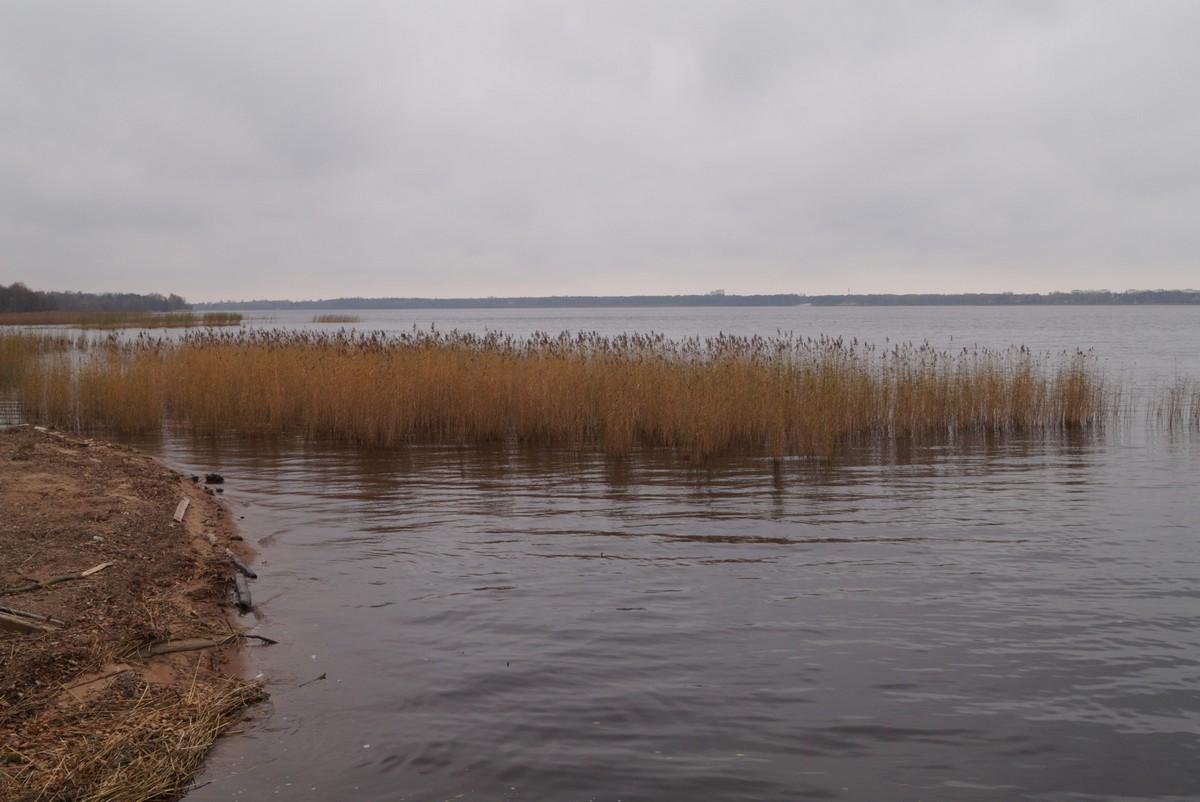 У озера Сестрорецкий Разлив. Конец октября.