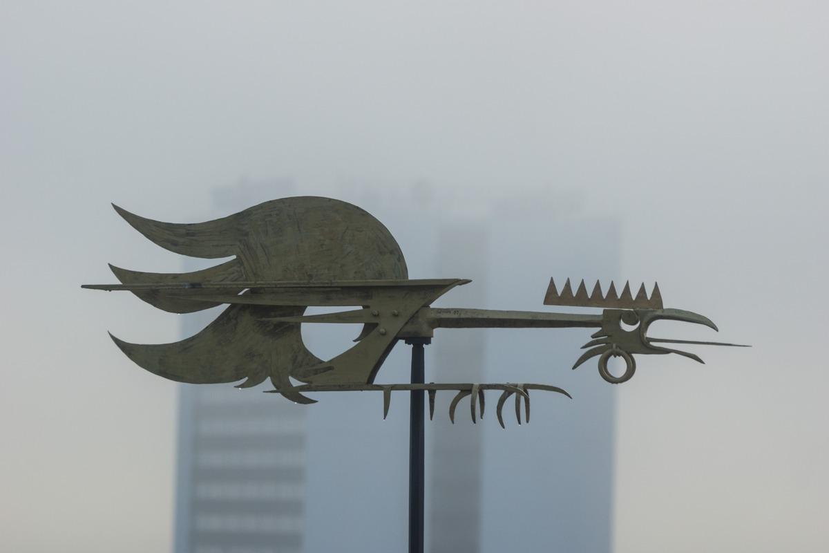 Таллин. Бойцовый петух на Надвратной башне у Пикк-Ялг.