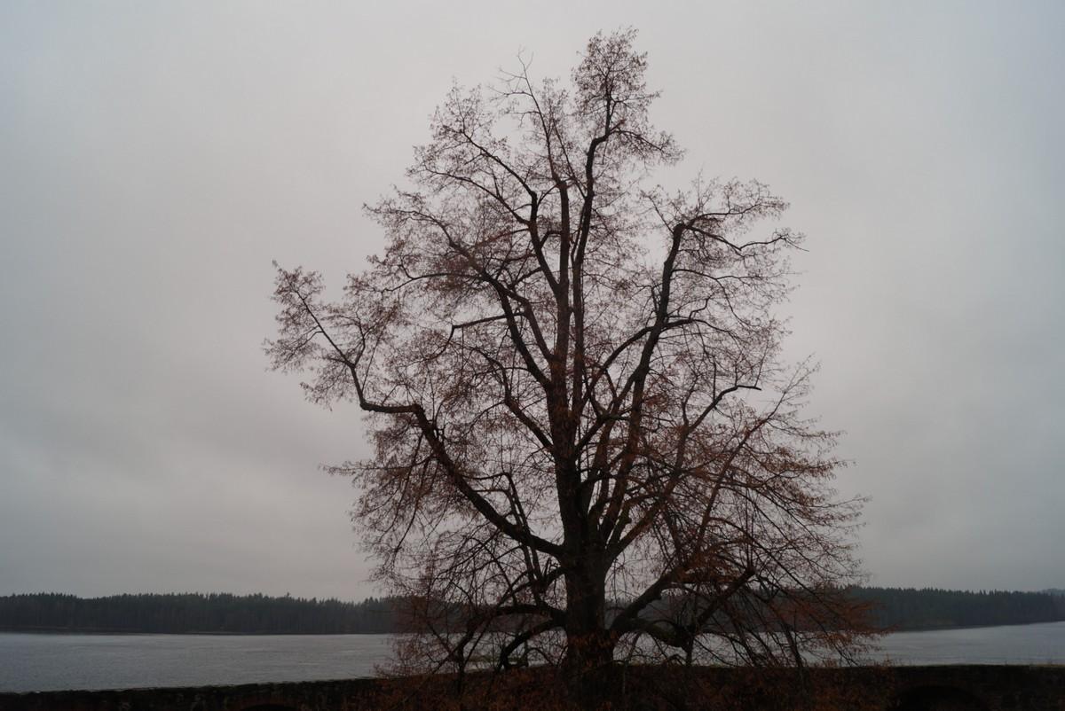 Финляндия. В крепости Олавинлинна. Ноябрь.