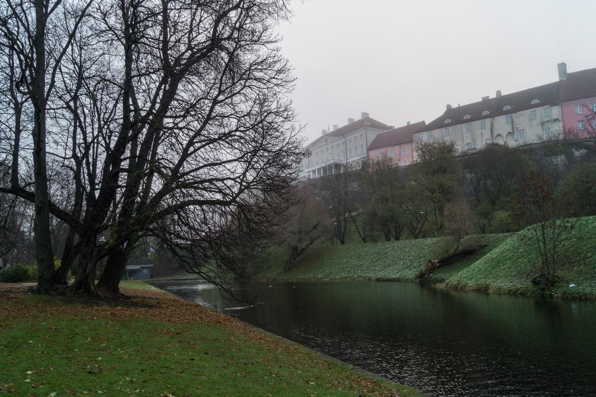 Таллин. Пруд Шнелли и туманное утро.