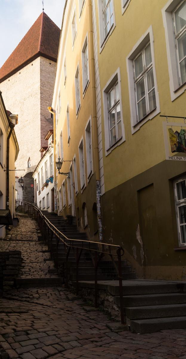 Таллин. Утро. Улица Люхике-Ялг. Вид снизу.