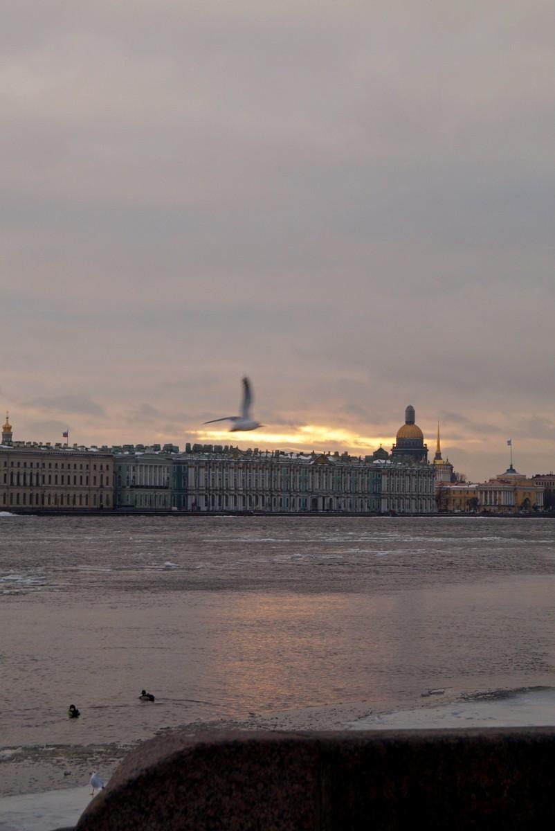 В Петропавловке. На Комендантской пристани. Просто Нева.