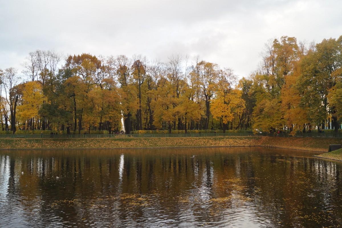 Санкт-Петербург. Октябрьский Летний сад. Карпиев пруд. С другой стороны.