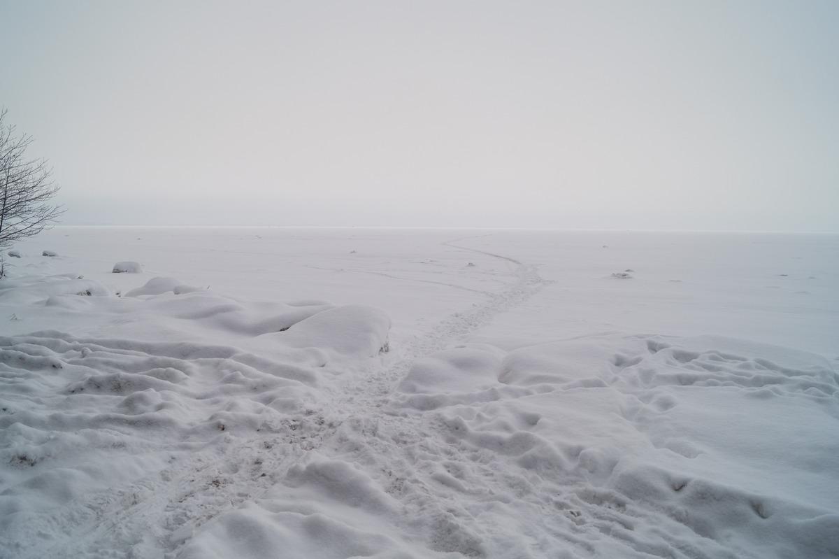 Ольгино. На берегу Финского залива. Февраль.
