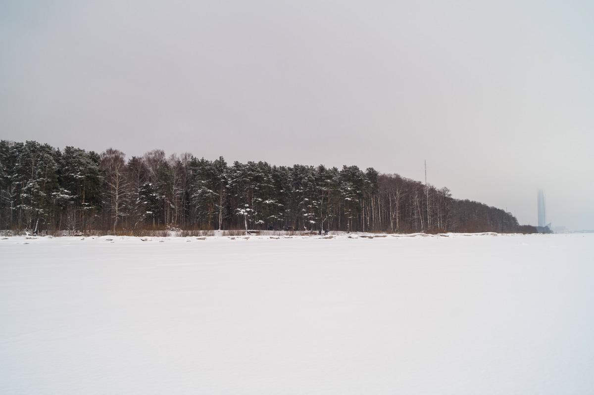 Ольгино. На Финском заливе. Вид на берег и Лахта-центр.