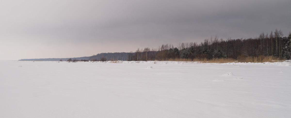 Ольгино. На Финском заливе. Вид на берег с застывшего залива.