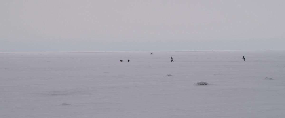 Ольгино. Финский залив. Февраль.