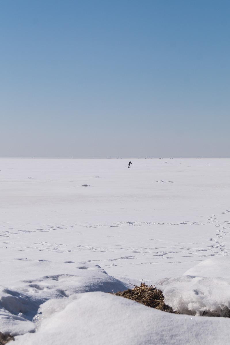 Ольгино. На берегу Финского залива. Лыжники или весна еще спит.