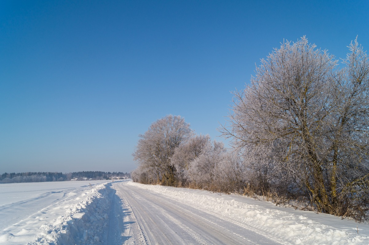 Эстония. Снежная дорога в марте.