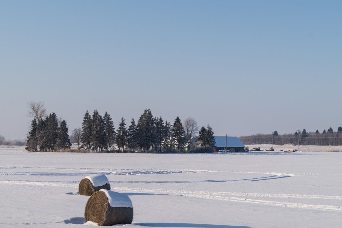 Эстония. Зимний хутор в марте.